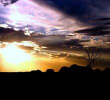 Turbulent Skies by Shelley Heath