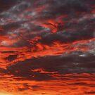 Red Sky by Sam Hanie