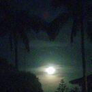 Misty moon by Luke Jones