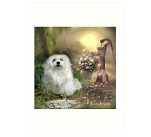 Snowdrop the Maltese at The Wishing Well Art Print