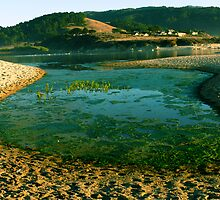 #241 Lagoon At Carmel River Beach  by MyInnereyeMike