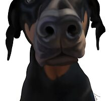 Doberman Stare by LindseyDuce