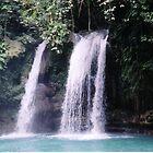 Tropical Waterfalls by Robert Phelps