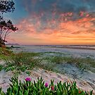 Tallow Beach by Cheryl Styles