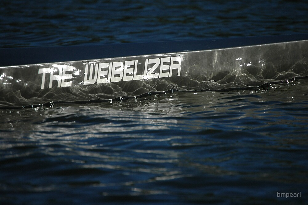 The Weibelizer by bmpearl