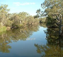 Outback NSW on the river by ishtarsands