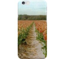 Dutch Tulips Fields iPhone Case/Skin