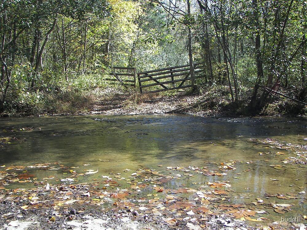 Across the Creek by budrfli