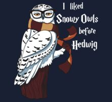Harry Potter Inspired Hipster Owl Kids Clothes