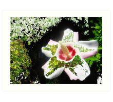 Garden Grace Art Print