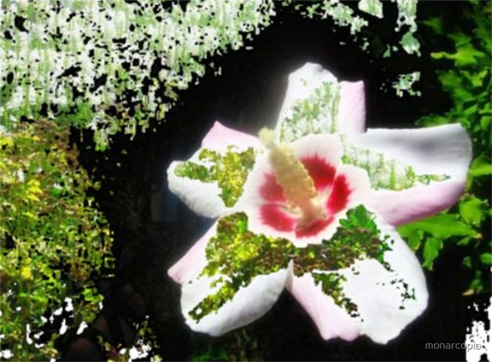 Garden Grace by monarcopia