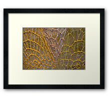 rope art Framed Print
