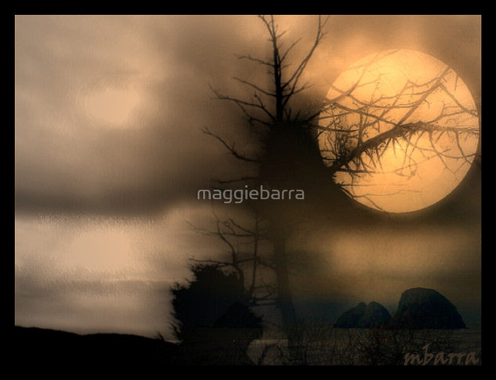 Night of The Full  Moon by maggiebarra