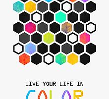 Live your life in color by Elisabeth Fredriksson