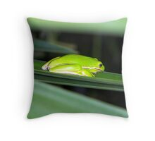 tree frog close and personal Throw Pillow