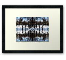 Cool Sense Framed Print