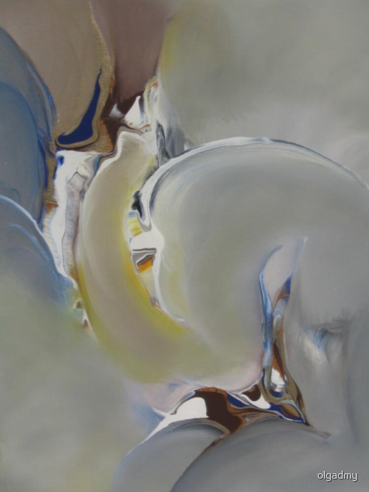 The Wonder by olgadmy