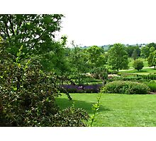 Hilltop Garden - View from Clover Hill Photographic Print