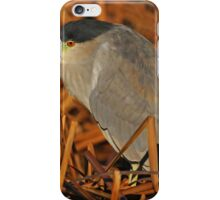 Black-crowned Night-Heron iPhone Case/Skin