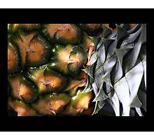 fruit 02 Photographic Print