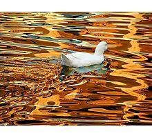 Joy on Golden Lake Photographic Print