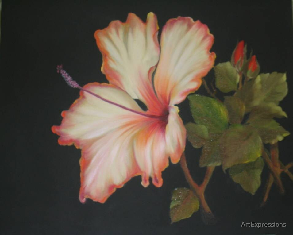 Golden Hibiscus by ArtExpressions