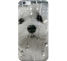 Snowdrop the Maltese - Spring Showers iPhone Case/Skin