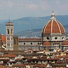 Red roofs of Florence by Elena Skvortsova