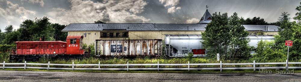 8159 Train Panorama by Mike  Savad