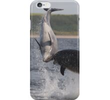 Bottlenose dolphins iPhone Case/Skin