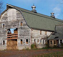 Old Barn by bunnij