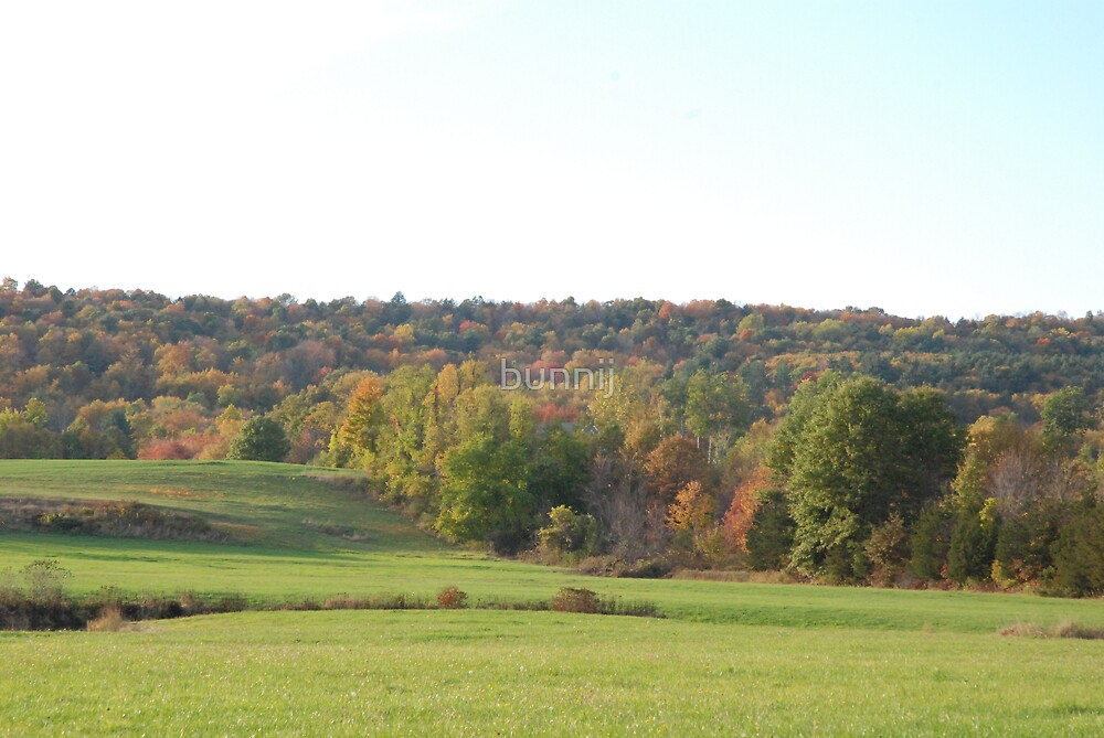 Autumn Hills in New England by bunnij