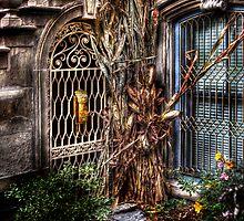 Hidden Side door by Mike  Savad