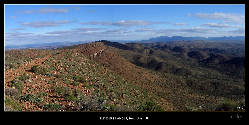 Flinders Ranges - South Australia by wales