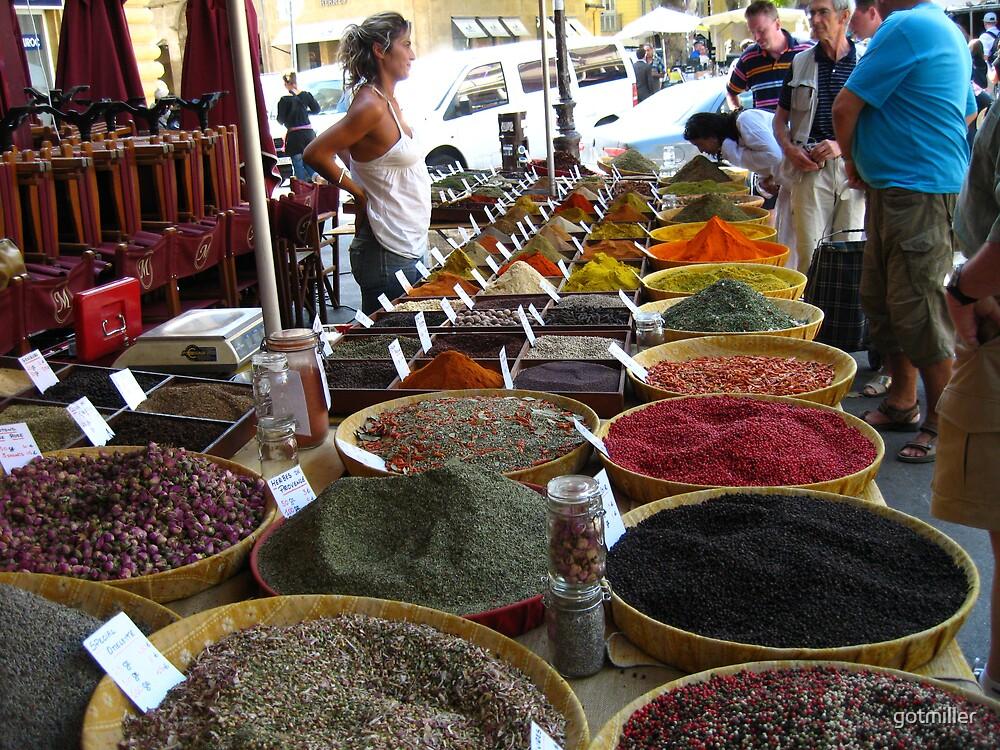 Spice by gotmiller