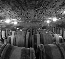 Wine Cellar by gotmiller