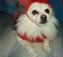 Bree Dog Chilling Like a Devil by karen66