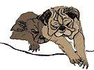 pugs by pobsb