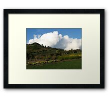 The Winery Gardens Framed Print