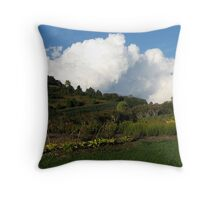 The Winery Gardens Throw Pillow