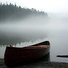 Pass Lake Canoe by Rick Lawler