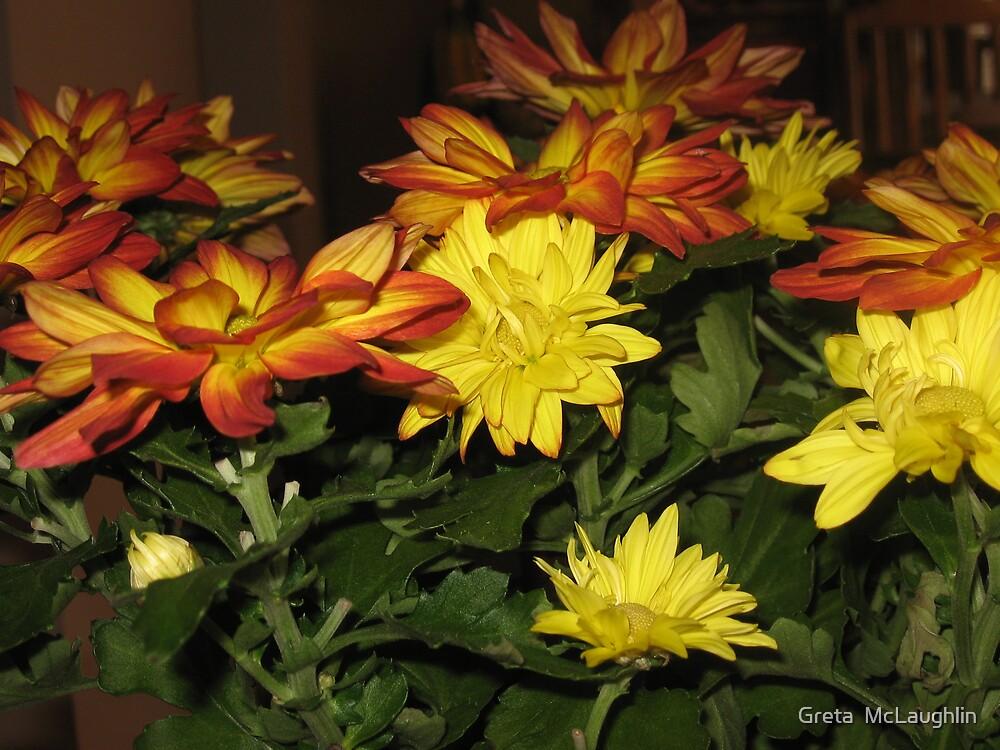 Fall Flowers by Greta  McLaughlin