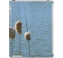 Fuzzy 'Tails iPad Case/Skin