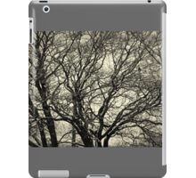 The Bare Winter Tree iPad Case/Skin