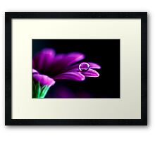 Crocodile Tear Framed Print