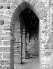 Arches by Paul Finnegan