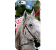 Medieval Knight On Horse Ready For Joust iPhone Case/Skin