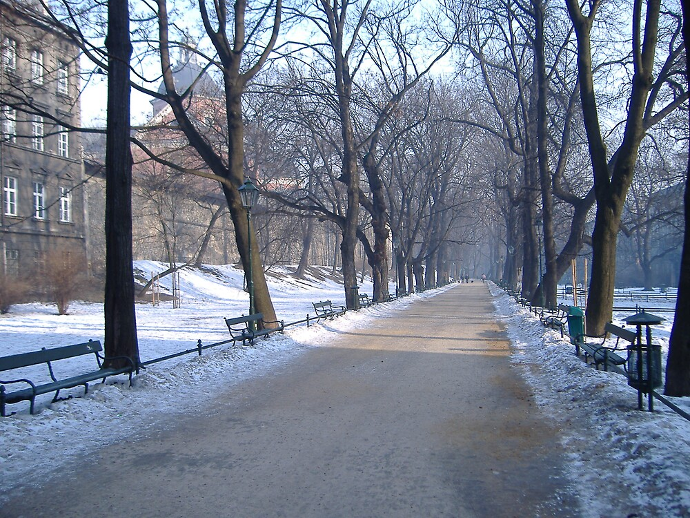 Krakow (Poland) in the winter months by Emma Fitzgerald