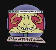 Ram Memory by Bruce  Watson