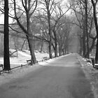 Krakow (Poland) in the winter months (Black and white) by Emma Fitzgerald